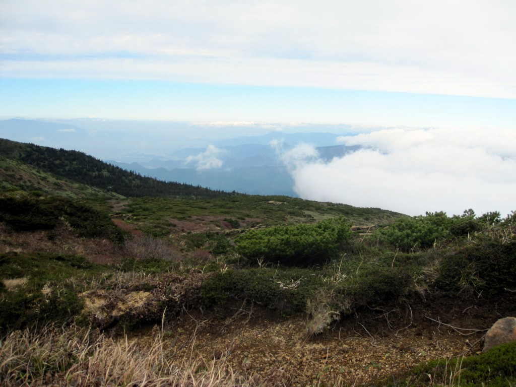 Up above the clouds on Mt. Zao.