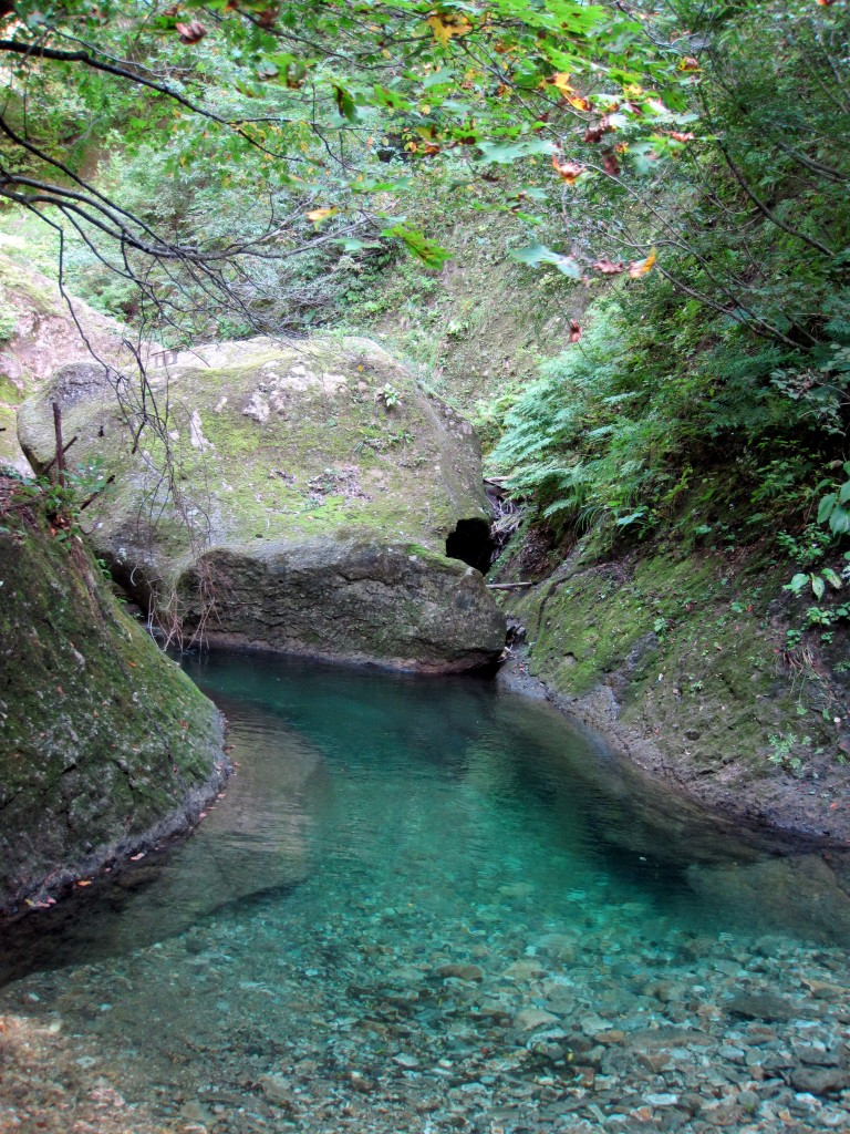 A crystal clear mountain stream along the trail at Omoshiroyama, Yamagata Prefecture, Japan.
